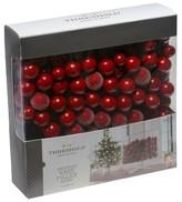 Threshold Filler Berry in Box