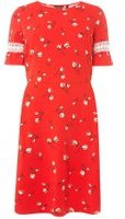 Dorothy Perkins Womens DP Curve Plus Size Red Floral Print Fit and Flare Dress- Red