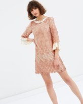 Max & Co. Papilla Dress