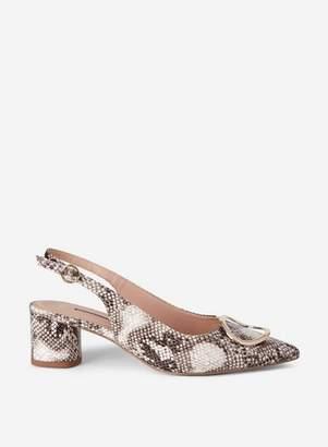 Dorothy Perkins Womens Multi Coloured Snake Print 'Emma' Heeled Court Shoes