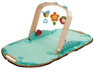 Hape Toys Portable Gym