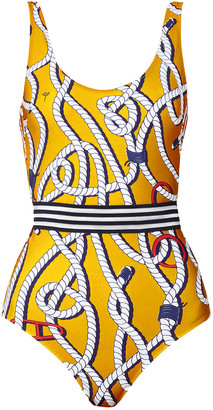 Emma Pake Coco Mesh-trimmed Printed Swimsuit