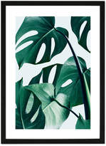 Monstera Framed Print