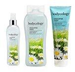 Bodycology Body 3 Piece Set (Fragrance Mist Spray, Body Cream, Body Wash) (Whoopsie Daisy)