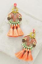 Elizabeth Cole Tropicalia Drop Earrings