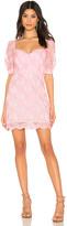 NBD X By X by Haze Mini Dress