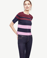Ann Taylor Petite Colorblocked Knit Topper