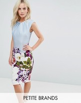 City Goddess Petite Pencil Midi Dress In Floral Placement Print