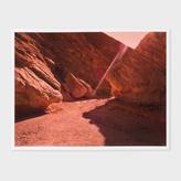 Paul Smith PS-DV-8395 Print - Alia Malley