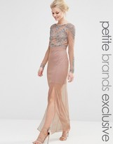 Maya Petite All Over Mesh Maxi Dress With Embellished Bodice Detail