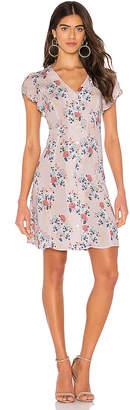 Velvet by Graham & Spencer Kirstan Mini Dress