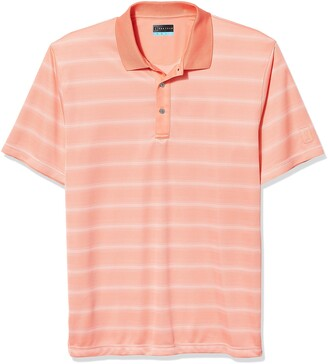 PGA TOUR Men's Big & Tall Short Sleeve Striped Polo Shirt