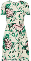 Burberry Printed Silk-georgette Dress - Green