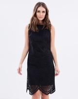 Wallis Aztec Lace Shift Dress