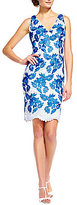 Adrianna Papell Sleeveless V-Neck Floral Two-Tone Lace Dress