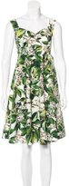 Dolce & Gabbana Spring 2015 Orange Blossom Dress