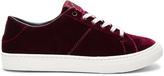 Marc Jacobs Empire Low Top Sneaker
