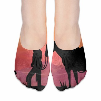 Cool Show Socks For Women Cowboy Horse Prayer Cross Low Cut Sock Liners Invisible Socks