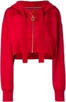 Tommy Hilfiger cropped crest hoodie