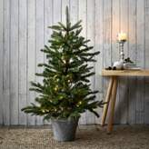 The White Company Pre-Lit Christmas Tree - 3.75ft