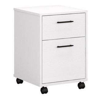 Beachcrest Home Cyra 2-Drawer Vertical Filing Cabinet Color: Pure White Oak