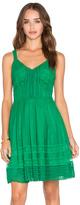 Greylin Calissa Lace Dress