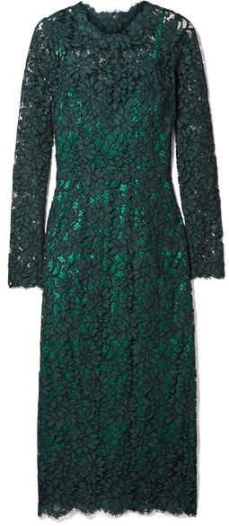 Dolce & Gabbana 凸纹棉质混纺蕾丝中长连衣裙