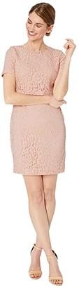 Lauren Ralph Lauren Petite Lace Popover Dress (Pink Macaron) Women's Clothing