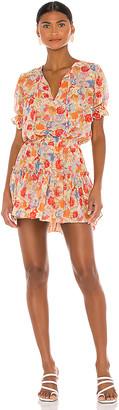 MISA Avani Dress
