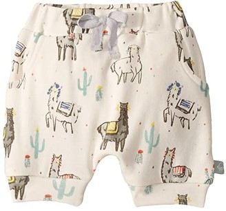 finn + emma Pull Up Shorts (Infant) (Llama) Kid's Shorts