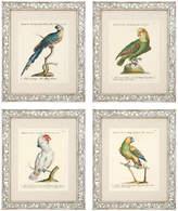 Eichholtz Dunbar Prints Set Of 4