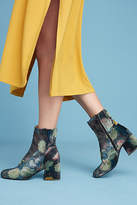 Miss L Fire Jeanie Floral Velvet Boots