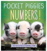 Pocket Piggies Numbers! (Board Book)