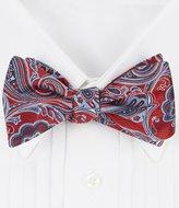 Daniel Cremieux Hit Paisley Silk Bow Tie