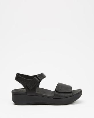 Vionic Women's Black Sandals - Raz Metallic Wedge Sandals - Size One Size, 6 at The Iconic