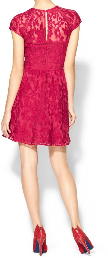 Dolce Vita Winsor Organza Lace Dress