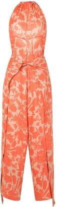 Alexis Shasta botanical print jumpsuit