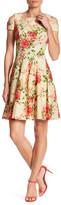 Sandra Darren Floral Cold Shoulder Fit & Flare Dress (Petite)