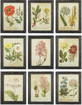 OKA English Garden Framed Prints, Set of Nine