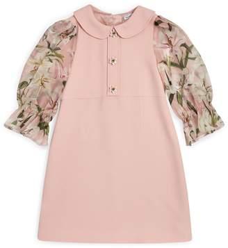 Dolce & Gabbana Lily Peter Pan Collar Dress