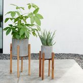 west elm Modern Wood Leg Standing Planter - Cylinder