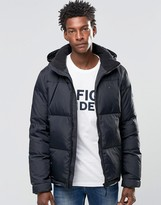 Tommy Hilfiger Padded Hooded Down Jacket