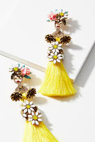 Elizabeth Cole Isobel Tassel Drop Earrings