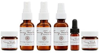 Tammy Fender At Home Facial - Purifying
