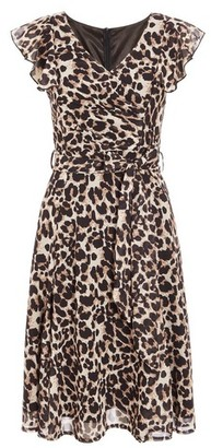 Dorothy Perkins Womens Quiz Brown Leopard Print Frill Dress, Brown