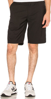 Publish Goren Shorts