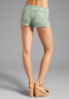 BB Dakota Lleyton Two Tone Lace Short