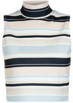 Cameo Rose Light Blue Stripe Funnel Neck Crop Top