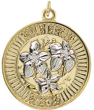 Foundrae Large Resilience Medallion