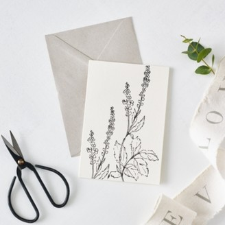 The White Company Agrimony Flower Outline Card, White, One Size